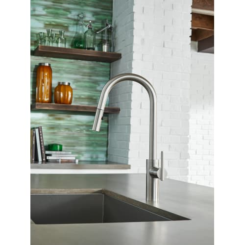 Danze D454058 Parma Pullout Spray Kitchen Faucet With Snapback ...